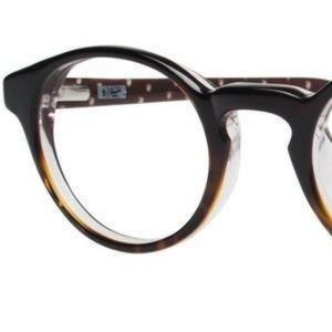 Penguin Stratford Glasses Tortoise oliver peoples